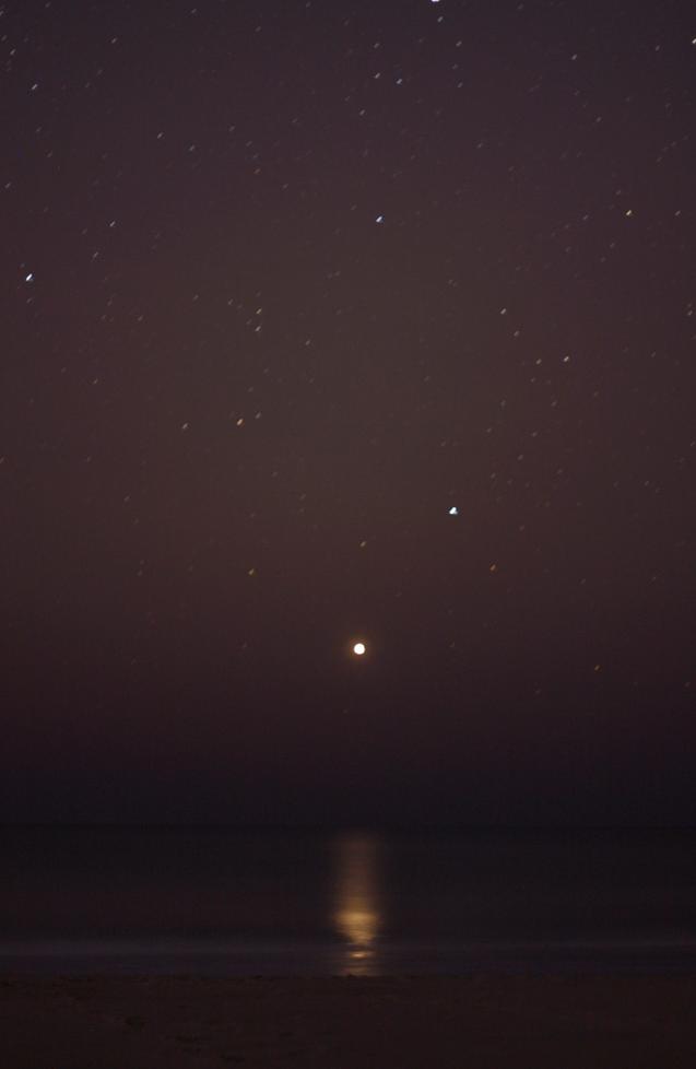Leonids_meteor_shower_2011_venus