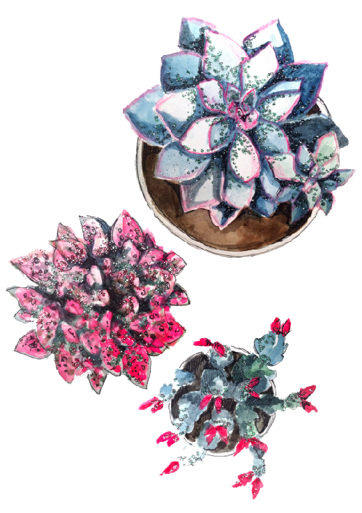 Paper_fashion_succulents